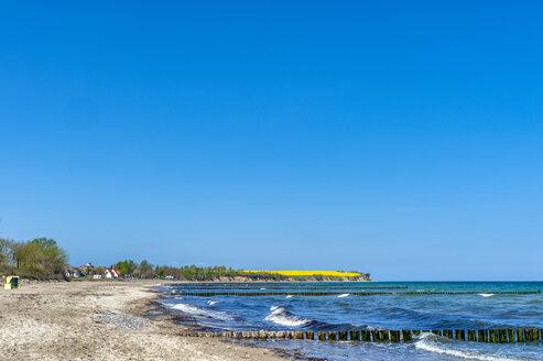 Strand und Steilk�ste mit Rapsfeld, Ostseebad Boltenhagen, Mecklenburg-Vorpommern, Deutschland - FRF00836