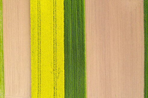 Germany, Baden-Wuerttemberg, aerial view of fields - STSF01969