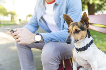 Portrait of attentive dog sitting on park bench beside his owner - WPEF01507