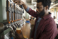 Male bartender pouring beer from tap in brewhouse - HEROF36316
