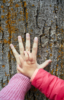Hand of mother and little daughter on  bark of a tree, close-up - GEMF02963
