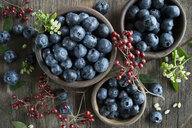 Bowl of blueberries, wooden spoon, rosehip, blueberry blossoms on wood - ASF06412