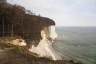 Chalk cliff, Jasmund National Park, Ruegen, Germany - WIF03912