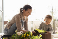 Mother and daughter planting flowers together on balcony - DIGF07038