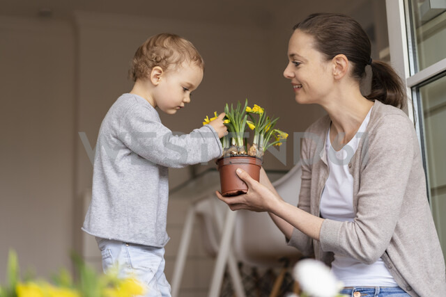 Cute little girl examining flower held by her mother - DIGF07041 - Daniel Ingold/Westend61