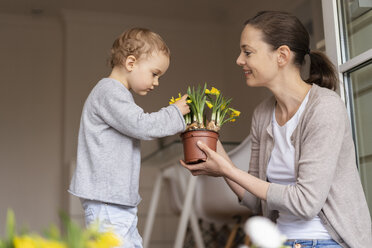 Cute little girl examining flower held by her mother - DIGF07041