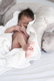 Newborn baby lying on blanket in bed - ERRF01361