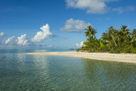 French Polynesia, Tuamotus, Tikehau, palm beach - RUNF02076