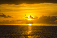 French Polynesia, Tuamotus, Tikehau, sunset over the ocean - RUNF02079