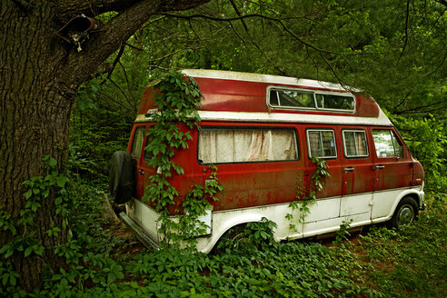 Foliage growing on abandoned camper van in forest - BLEF03749