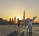 Middle Eastern man walking camels near city - BLEF04052