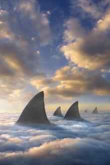 Shark fins above clouds - BLEF04091