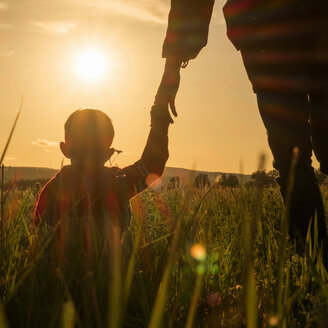 Woman and son holding hands in field at sunset - BLEF04376