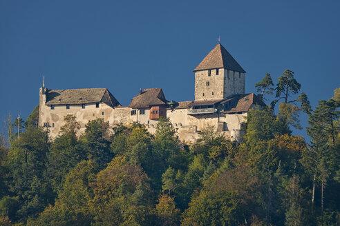 Schweiz, Schaffhausen, Stein am Rhein, Bodensee, Burg Hohenklingen im Herbst - SH02178