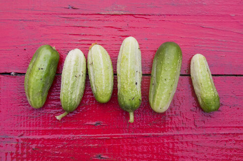 Close up of row of green cucumbers on red wooden table - BLEF04437