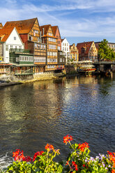 Half-timbered and gable houses at Ilmenau river, Lueneburg, Germany - PUF01565