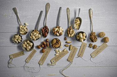 Peanuts, hazelnuts, cashew nuts, brazil nuts, pistachios and almonds - ASF06437
