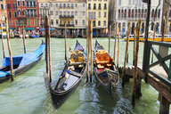 Gondolas moored on sunny canal in front of architectural buildings on the Grand Canal, Venice, Italy - JUIF01162