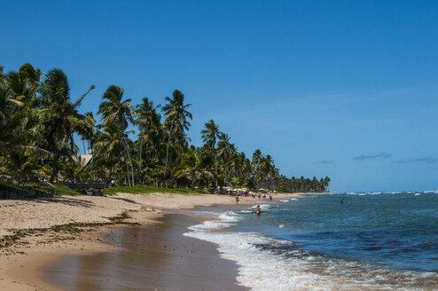 Tropical beach in Praia do Forte, Bahia, Brazil - RUNF02364