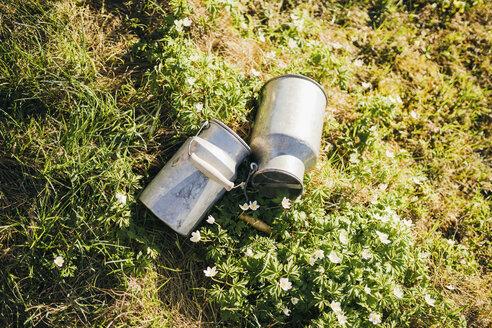 Milk churns lying in grass - PSIF00278