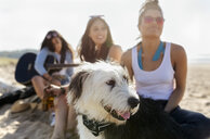 Three women with dog and guitar on the beach - MGOF04081