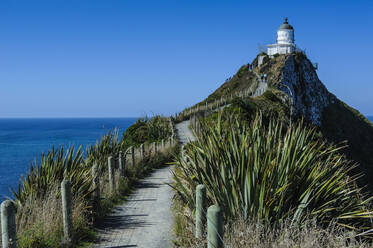 Nugget Point Lighthouse, the Catlins, South Island, New Zealand - RUNF02578
