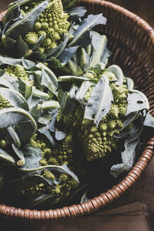 High angle close up of freshly harvested green Romanesco cauliflowers in wicker basket. - MINF11299