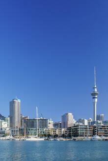 Auckland skyline on waterfront, Auckland, New Zealand - MINF11598