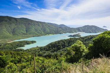 View over the Marlborough Sounds, South Island, New Zealand - RUNF02661