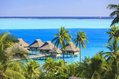 Palm trees overlooking tropical resort, Bora Bora, French Polynesia - MINF12236