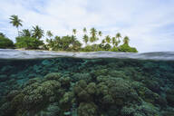 Reef in tropical water, Bora Bora, French Polynesia - MINF12245
