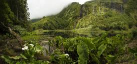 Still river in lush remote landscape - MINF12553