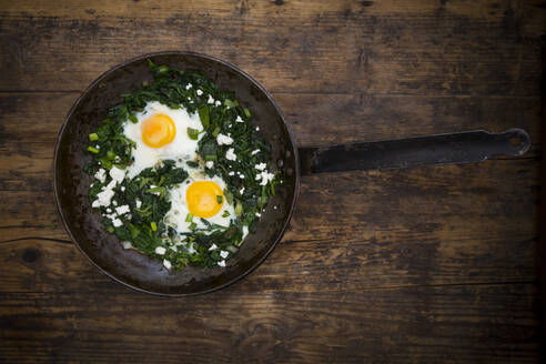 Green Shakshouka with baby spinach, chard, spring onions and basil in a pan - LVF08091
