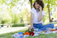Relaxed woman on cell phone having a picnic in park - FMOF00695