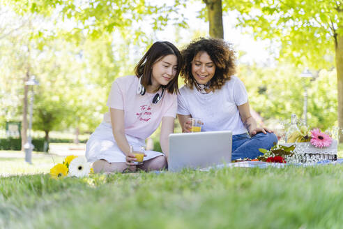 Two women having a picnic and using laptop in park - FMOF00722