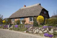 Thatched-roof house, Gross Zicker, Moenchgut, Ruegen, Germany - WIF03940