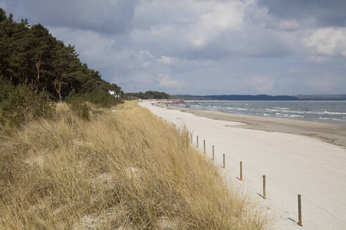 View to beach and the sea from dunes, Prora, Ruegen, Germany - WIF03953
