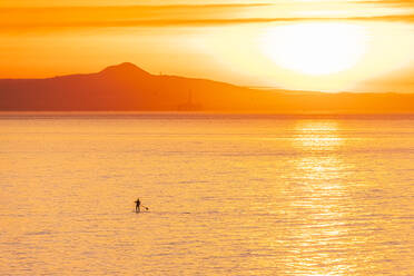 Man on stand up paddle board at sunset, North Berwick, East Lothian, Scotland - SMAF01259