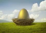 Golden egg in bird's nest - BLEF07494
