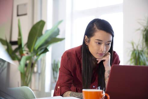 Woman using laptop in office - FKF03358