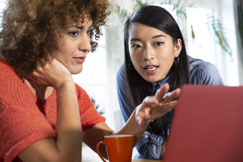 Two women with laptop talking in office - FKF03406