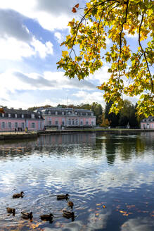 Benrath Palace and pond in autumn, Duesseldorf, Germany - PU01631