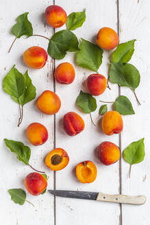 Apricots and knife on white wood - SARF04315