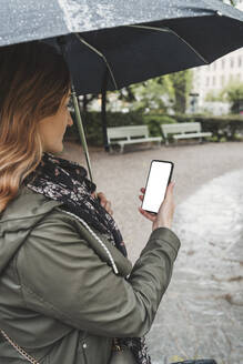 Young woman using cell phone on a rainy day - FBAF00774
