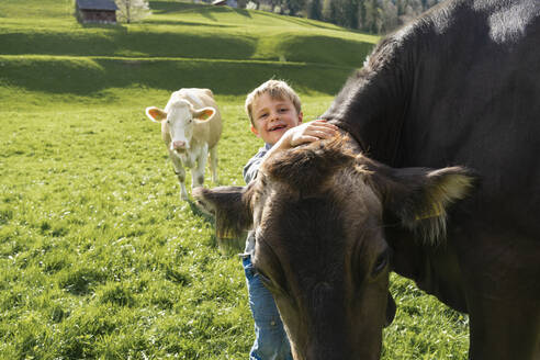 Happy boy with cow on pasture - FBAF00822