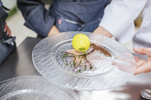 Junior chef showing his prepaired dessert on plate - LJF00186