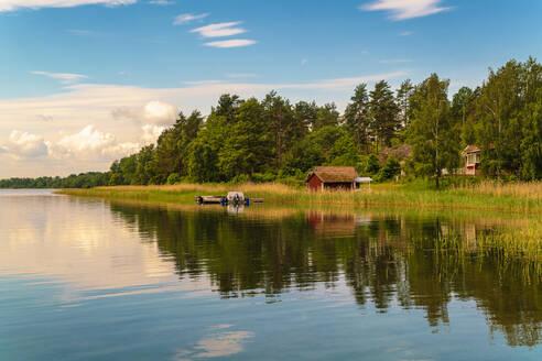 Nature at Loftahammar area near Västervik in East Sweden - TAMF01692