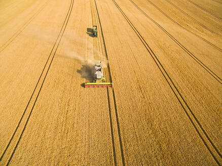 Aerial view of combine harvester and tractor in sunny golden barley field - JUIF01986