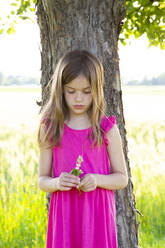 Portrait of little girl standing under apple tree with clover flowers in hands - LVF08137