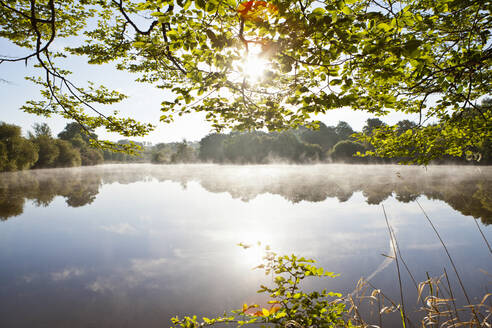 Sun shining over tranquil sunrise lake surrounded by trees - JUIF02048
